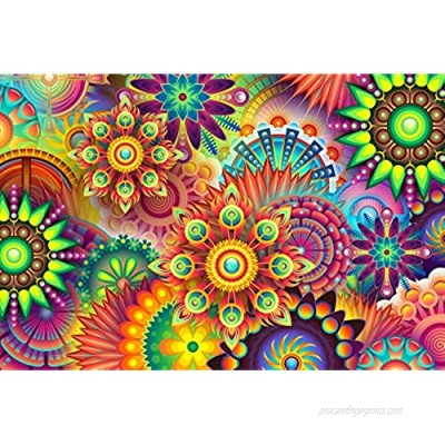ABERDOMIC 1000 Piece Jigsaw Puzzles  Vivid Color Psychedelic Mandala Floral Patterns Pieces Puzzle for Adults Teen Kids  Difficult and Challenging