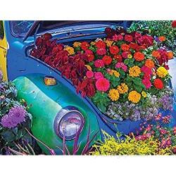Springbok 500 Piece Jigsaw Puzzle Garden Bug