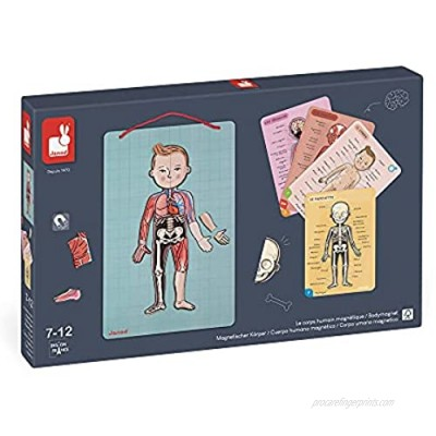 Janod Bodymagnet Educational Human Body Game - Anatomy  Organs  Skeleton  Muscles - 76 Magnetic Pieces - From 7 Years Old  12 Languages  J05491